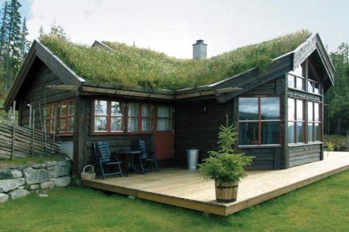 en brun hytte på fjellet med gresstak go flott uteplass